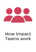 Corwin Impact Teams - Process