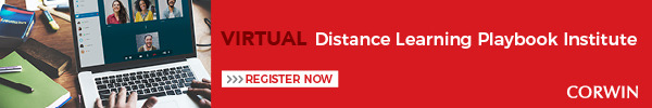 Distance Learning Virtual Institute